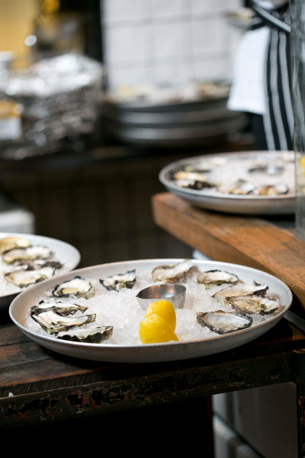 Osyters, cheap oysters, where can i get cheap oysters