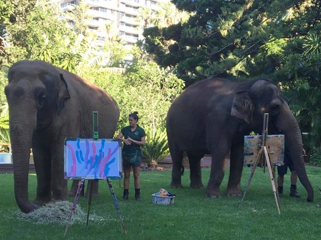 painting,with,elephants