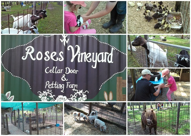 roses petting zoo, port macquarie, NSW, mid north coast, family attractions, kids, children, school holidays,
