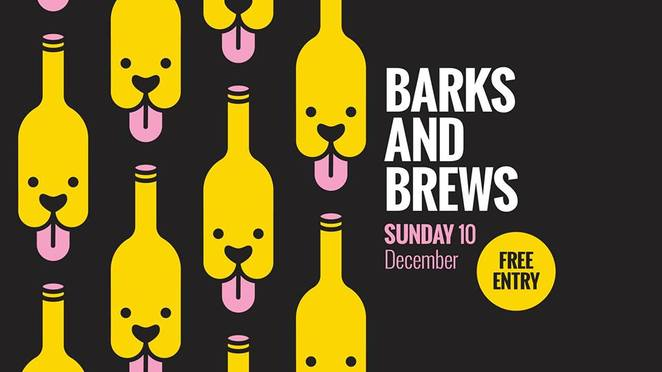 the brightside, barks and brews, valley, pub, drinks, Brisbane, dog event, dog friendly, can rover come over cupcakes, lucky egg, food, alcohol, bar, Sunday chills, pug, free photography, rspca, adoption, live music