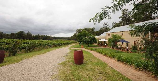 tintilla estate, hunter valley wineries, hunter valley wine tasting, award winning wineries hunter valley