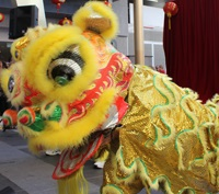 valley chinese lunar new year festival 2014