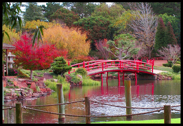 Photo of the Japanese Gardens in Toowoomba courtesy of Russell Brigg (Flickr.com)