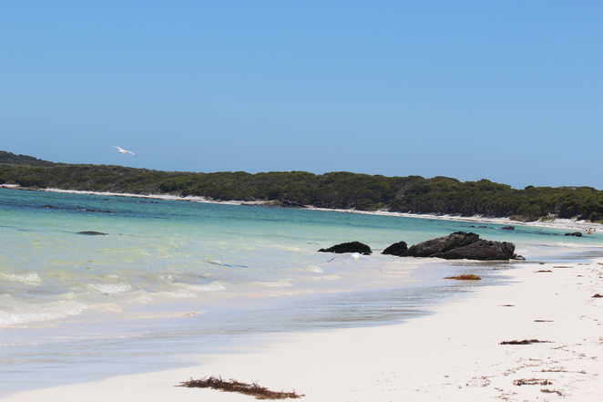 beach, crystal waters, swimming, snorkelling, kayaking, fishing, holiday, Hopetoun