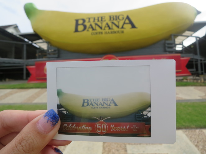 big things, australia, road trip, attraction, tourist, queensland, brisbane, cairns, big banana, coffs harbour