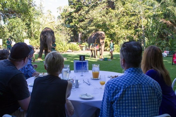 breakfast,with,elephants