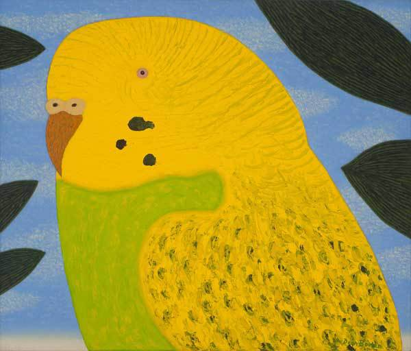 Yellow budgie – oil on linen, 45 x 53cm