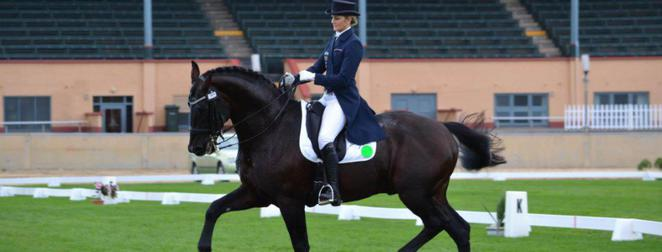 Dressage, Showjumping and Interschool State Championships