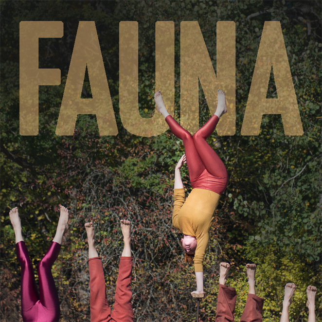 Welcome to Fauna at the Adelaide Fringe 2017