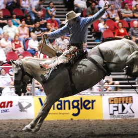 Gold Coast Rodeo, Jeep Gold Coast National Finals Rodeo