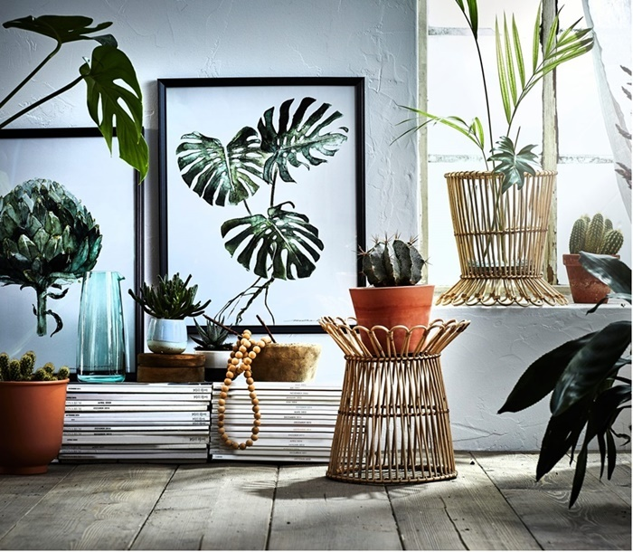 Pl Suggest Some Nice Places In Kerala And Best Time For: Where Are The Best Places To Buy Budget Homewares In