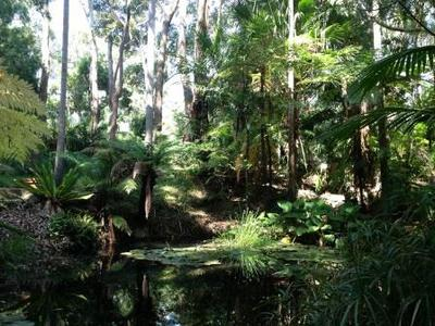 Joseph Banks Native Plants Reserve