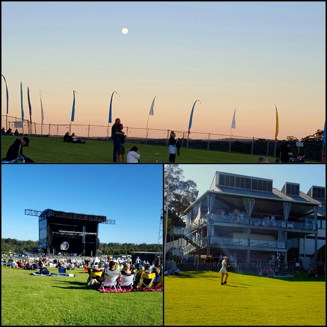 Outdoor, concert, music, winery