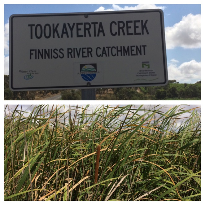 Tookayerta Creek