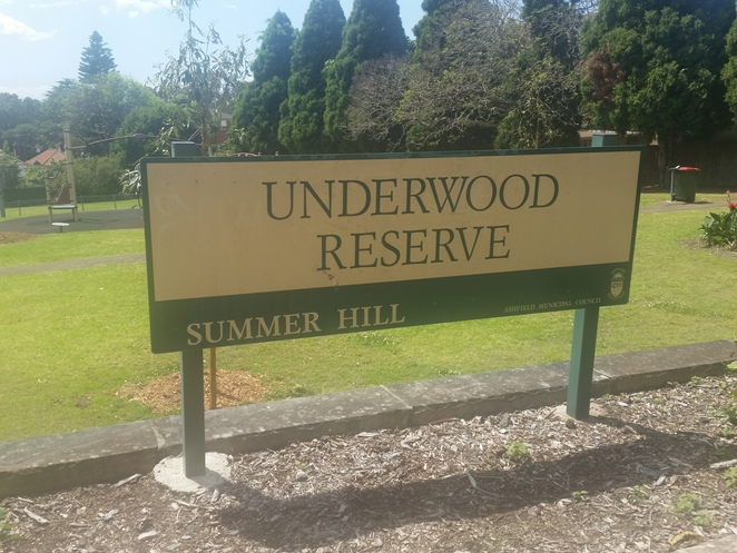 underwood reserve, Summer Hill, Inner West, Sydney, parks, playgrounds
