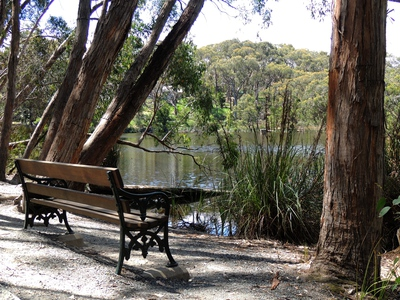 wetlands, ducks, native fauna, wildlife, australian trains, australian reserves, history of south australia, south australian railways, nature reserve