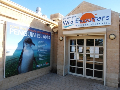 Wild Encounters at Shoalwater.