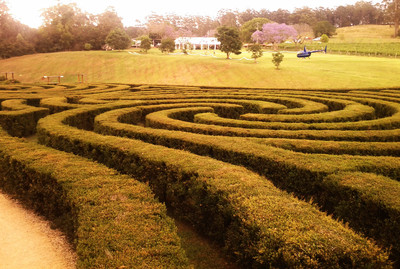 The maze at Bago