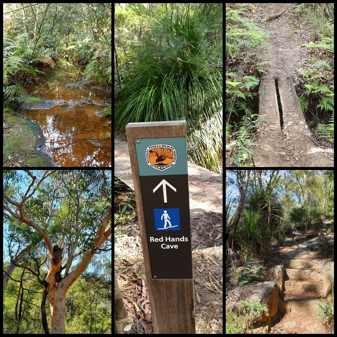 Blue Mountains, Glenbrook, National Park, nature, bushwalk, free, family, environment