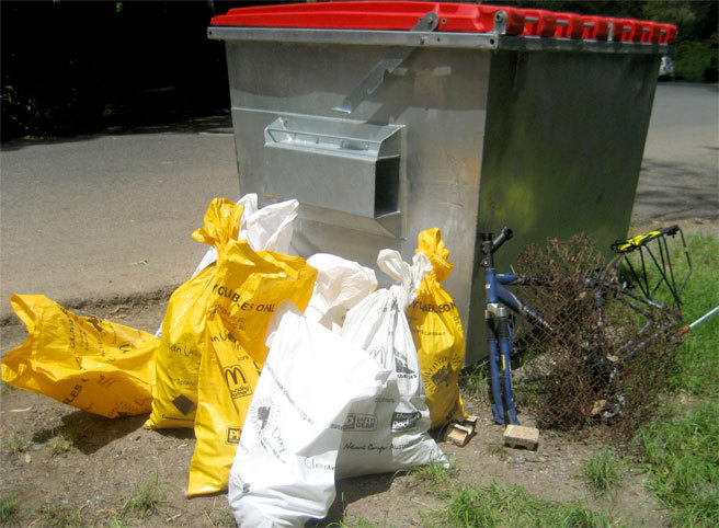 Some of the rubbish that we collected last year and a skip provided by the council