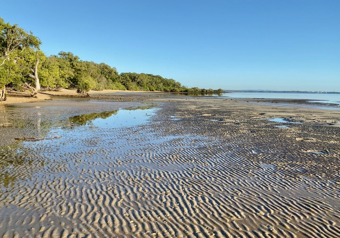 Sand ripples running along Morwong Beach at low tide