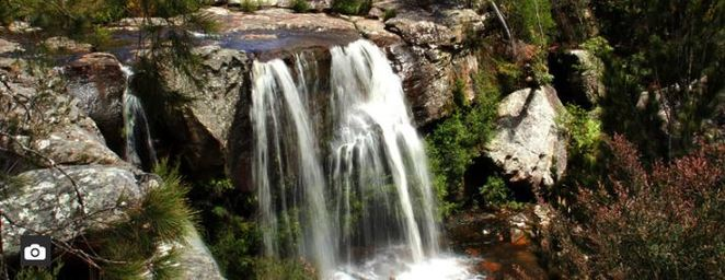 Dharawal national park, nsw, photography, nature