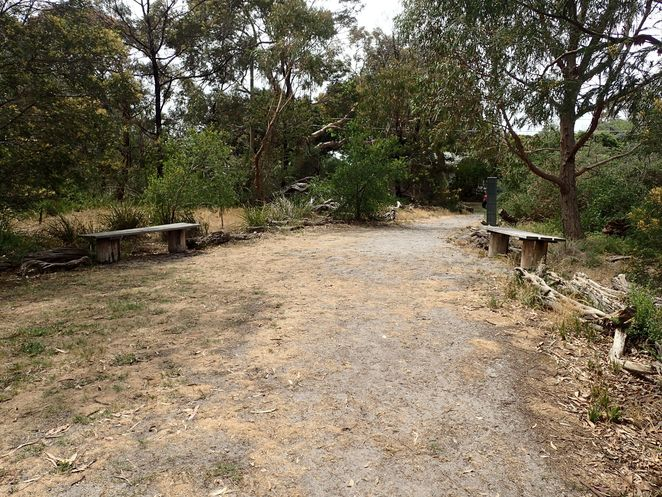 Donald McDonald Reserve, Beaumaris, park, sports oval, bushland, walks, walking tracks, dog-friendly, playground, picnic, wildflowers