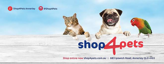 fur family fun day, annerley, southside, southern suburbs, dog event, brisbane, shop 4 pets, pet shop, pet boutique, free, family fun day, face painting, snow cones, fairy floss, diy dog wash, free advice, pet care, behaviour training, nutrition, weekend, party, march madness