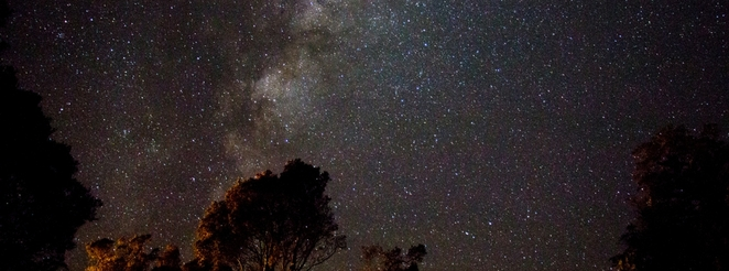 Gardens, Astronomy, Lectures, Mount Annan, Sydney, Unusual Things to Do, Outdoor, Parks