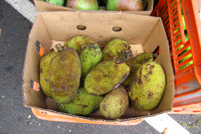 jackfruit, ethnic food, exotic food, global foods market, woodridge, farmers market, Sunday market