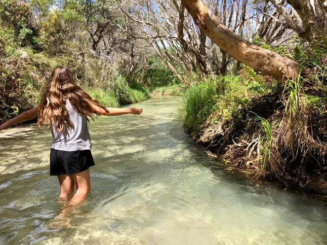Eli Creek offers cold but refreshing freshwater swimming