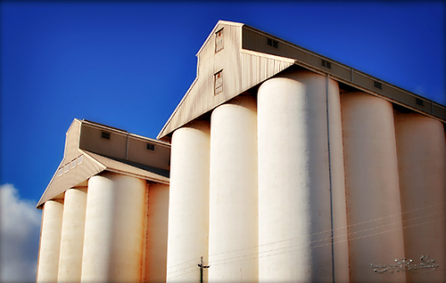 Kingaroy, Peanut Silo's, Regional Art Gallery, Paintings, Craft, Photography, South Burnett