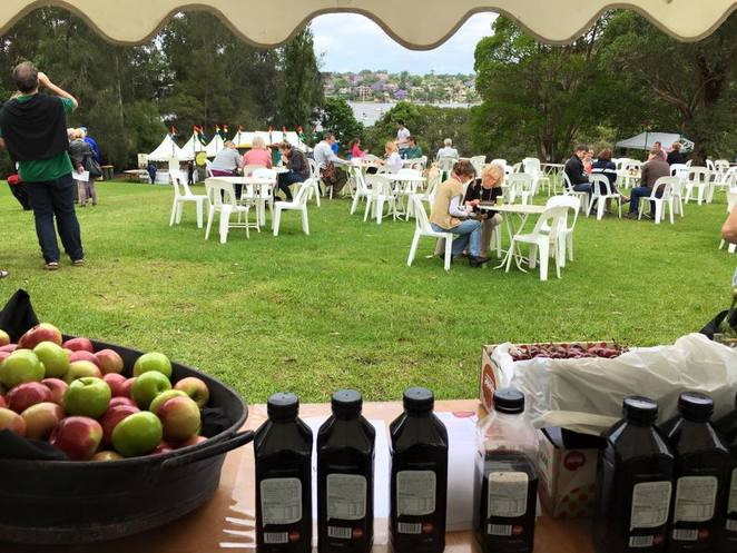 lane cove, food and wine festivals, wine tastings, family events in lane cove, orange region wines