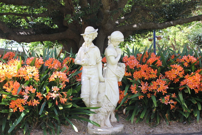 Laurel Bank Park, Toowoomba parks, playground, cafe, flowers, family activity, fun,