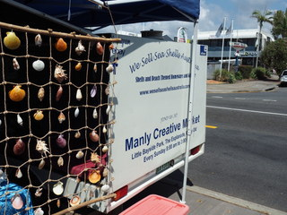 manly markets, sea shells, manly