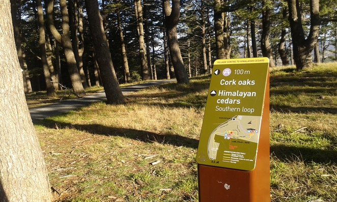 national arboretum, canberra, walking trails, school holiday activities,