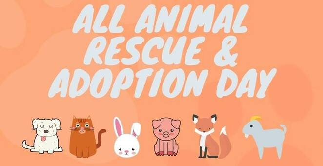 Pet,adoption,day