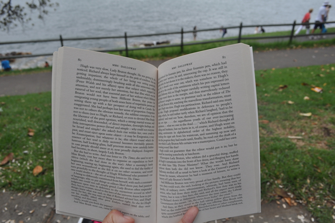 Reading at Mrs Macquarie's Point