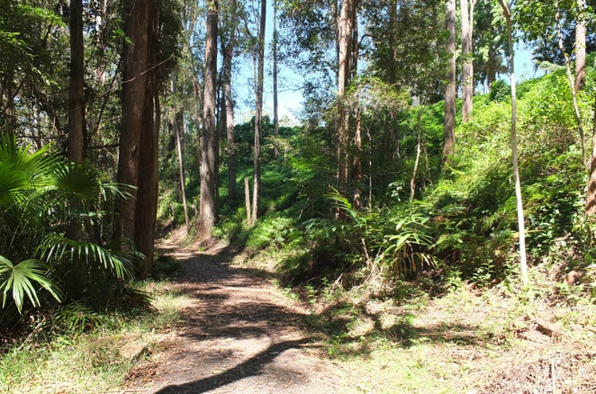 Buderim Palmwoods Heritage Tramway Walk, historical value, four kilometre walk return, well-marked trail, reminiscent walk through time, dog-friendly