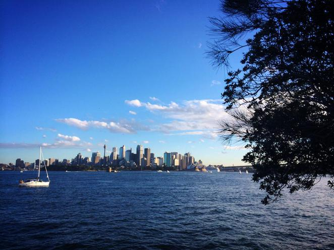 cremorne, point, reserve, walks, circuit, robertson's point, sydney city