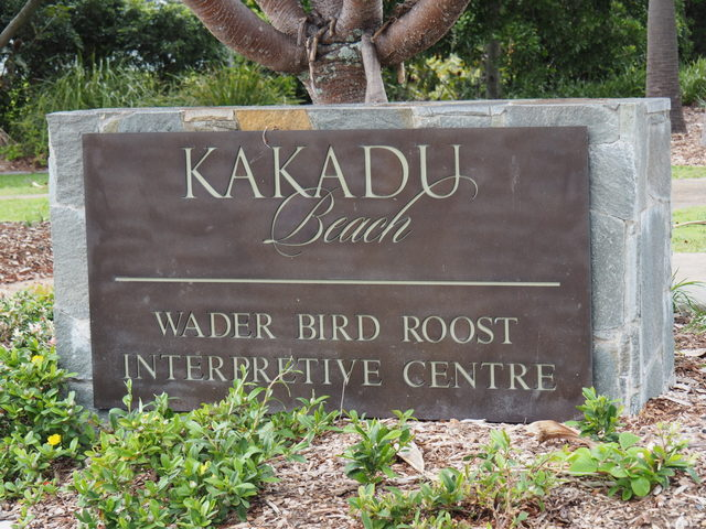Kakadu, Wader Birds, Bird Hide