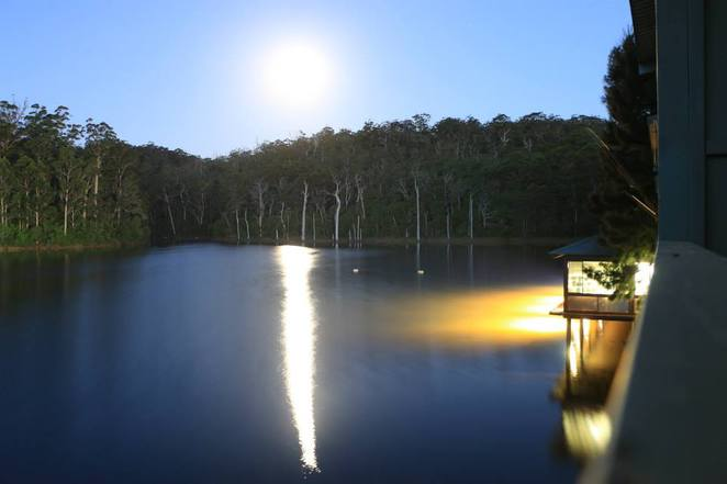 Karri Valley Resort, Lake Beedelup, Beedelup National Park, South West, where to stay pemberton, pemberton accomodation, south west resorts, southern forests, pemberton hotels, south west accomodation