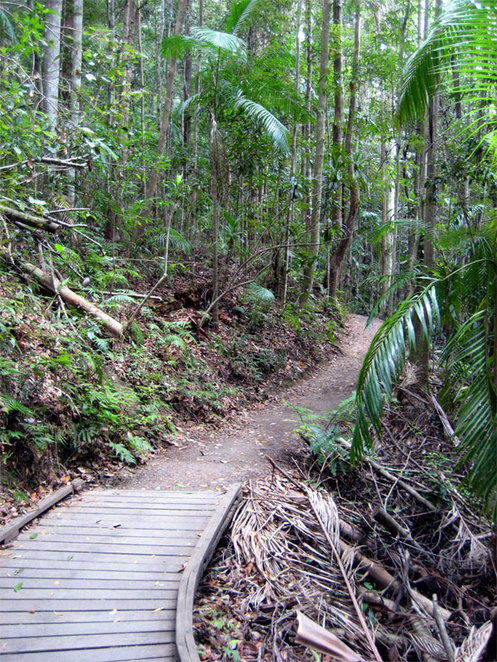 The Picnic Creek Circuit is an easy walk along well maintain paths and boardwalks