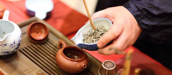 melbourne tea workshops