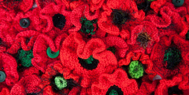 Middleton Beach Group Beach Poppies Tribute