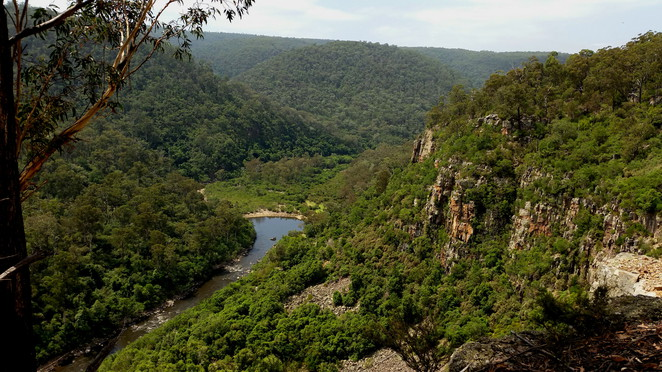 Mitchell River Gorge