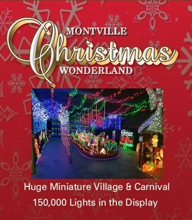 Montville Christmas Wonderland, Santa wonderland, Christmassy, weatherproof display, two hour sessions, visitor numbers limited, ticket holders, two display sections, miniature village, Christmas carnival, Disney, Lego, shops, homes, The Grinch, National Lampoons, photo opportunities, Christmas Market, Christmas merchandise, nibblies, coffee, Christmas Pop Culture Competition, parking regulations, shuttle bus, parking onsite for disabled and prams, Maleny, snow machine