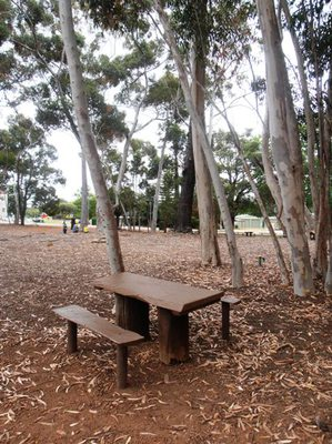 A gorgeously rustic hand-crafted picnic table at the Mundaring Community Sculpture Park.