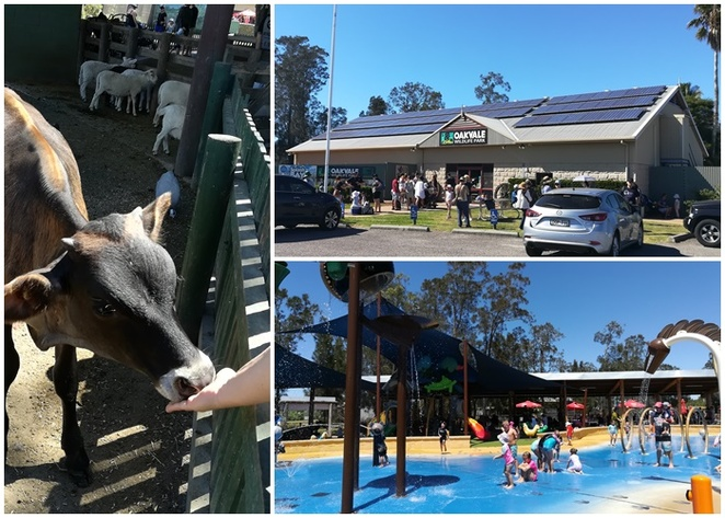oakvale wildlife park, bobs farm, williamtown, nelson bay, nelson bay road, NSW, port stephens, zoos, family, kids, tourist attractions, school holidays, whats on, road trips form newcastle,