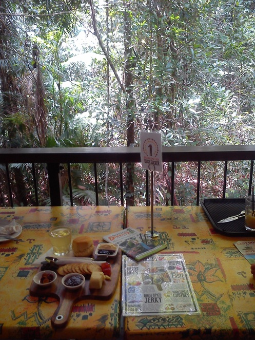 rainforest discovery centre, bushtucker tasting plate, Daintree rainforest, things to do near Cairns, family friendly, far north queensland